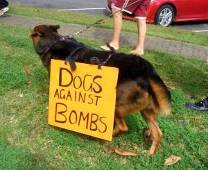 Peace_dog